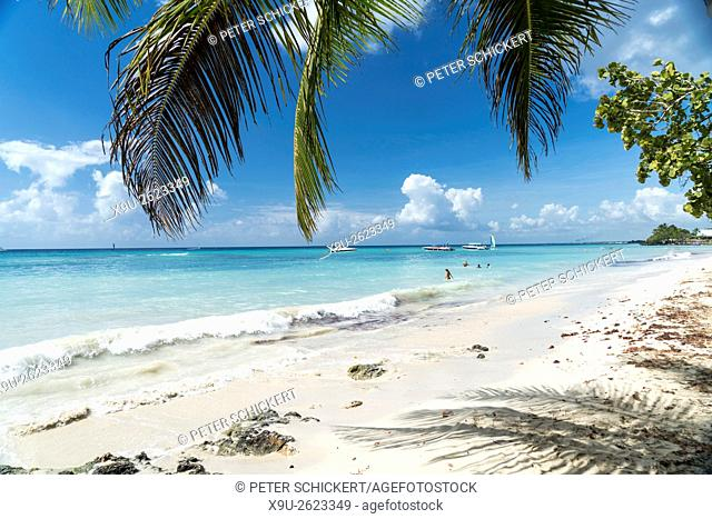 palm fringed sandy beach of Bayahibe, Dominican Republic, Carribean, America