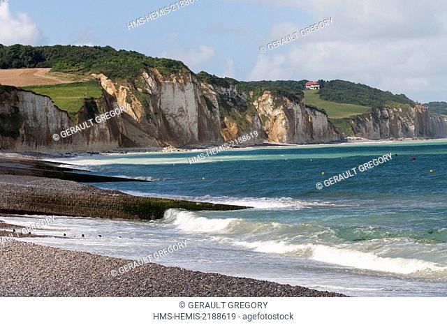 France, Seine Maritime, Pays de Caux, Cote d'Albatre, Varengeville sur Mer, blade breeze, pebble beach and cliffs