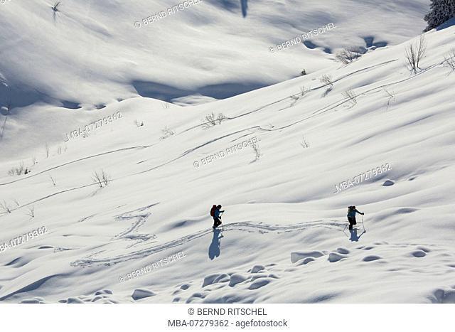 ski tour at the Schönberg, close Lenggries, Bavarian Prealps, Upper Bavaria, Bavaria, Germany