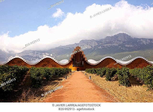 Vineyard and Ysios winery building designed by architect Santiago Calatrava, Sierra de Cantabria mountains in background, Laguardia, Rioja Alavesa, Araba
