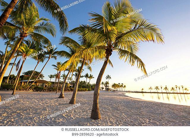 SAND BEACH RED FISH GRILL RESTAURANT MATHESON HAMMOCK COUNTY PARK MIAMI FLORIDA USA