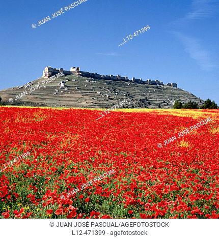 Caliphal fortress (10th century), Gormaz. Soria province, Castilla-León, Spain
