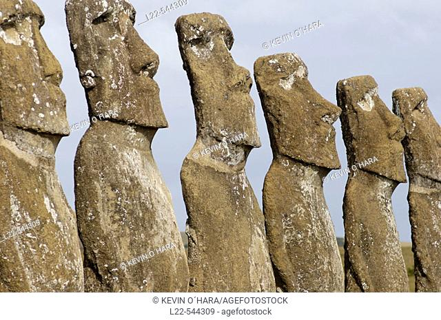 With the exception of Ahu Akivi, all the erected Moai face inland, possibly placed that way to watch over the villages. Ahu akivi is also unusual in that it is...