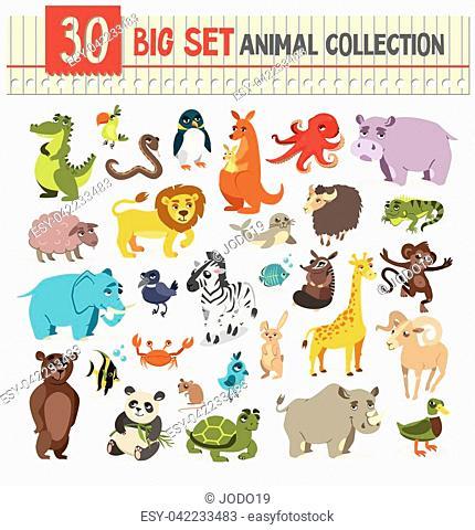 big set animal collection