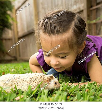 A young girl on the grass looking at a small hedgehog