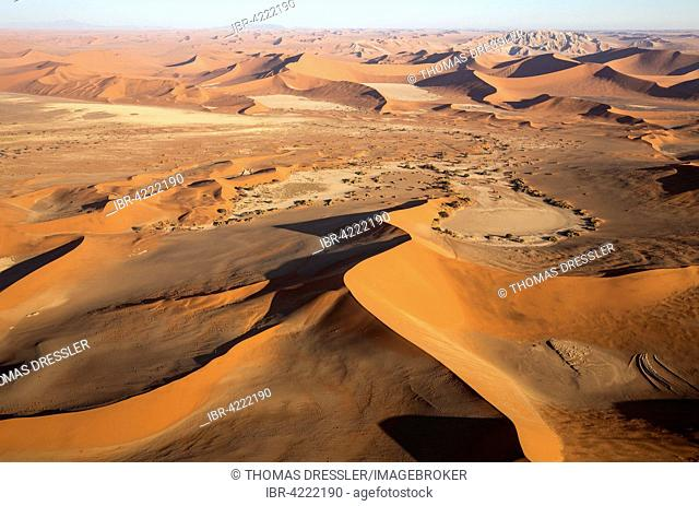 Sand dunes in the Namib Desert, Witberg at the top right, 426m, granite massif in the centre of the Namib Desert, camel thorn trees (Acacia erioloba)
