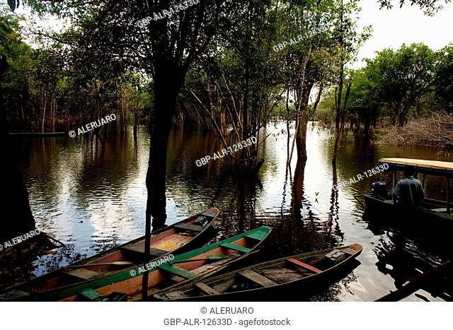 Canoe, River, Amazônia, Manaus, Amazonas, Brazil