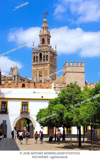 Giralda tower, Sevilla. Andalusia, Spain
