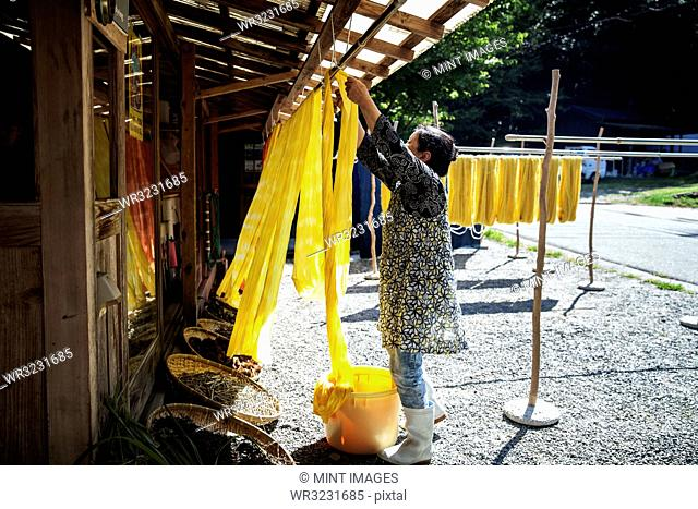 Japanese woman outside a textile plant dye workshop, hanging up freshly dyed bright yellow fabric