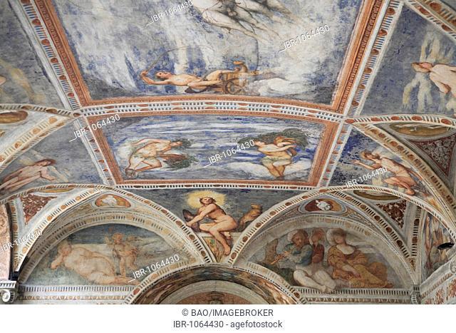 Frescos in the Romanino Loggia of Castello del Buonconsiglio, Trento, Trentino, Alto Adige, Italy, Europe