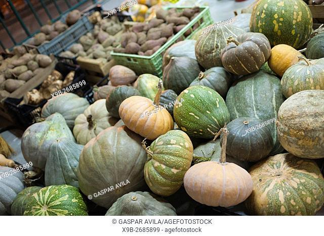 Assorted varieties of pumpkins and sweet potatoes on display