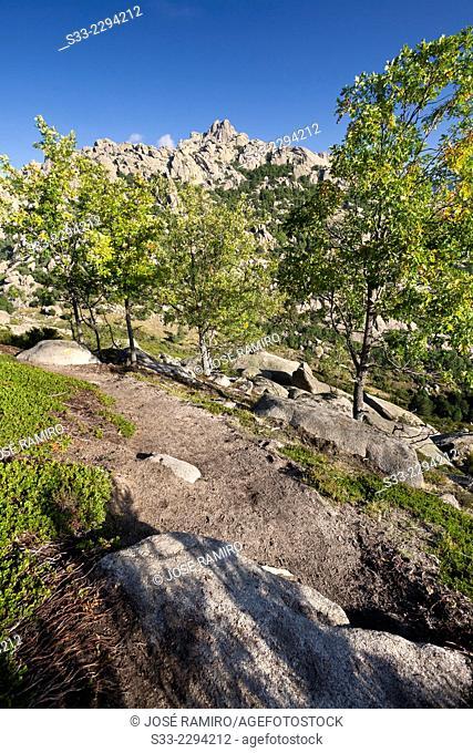 Santillana Wall cliff on The Pedriza. Regional Park of the Cuenca Alta del Manzanares. Sierra de Guadarrama. Manzanares el Real. Madrid. Spain. Europe