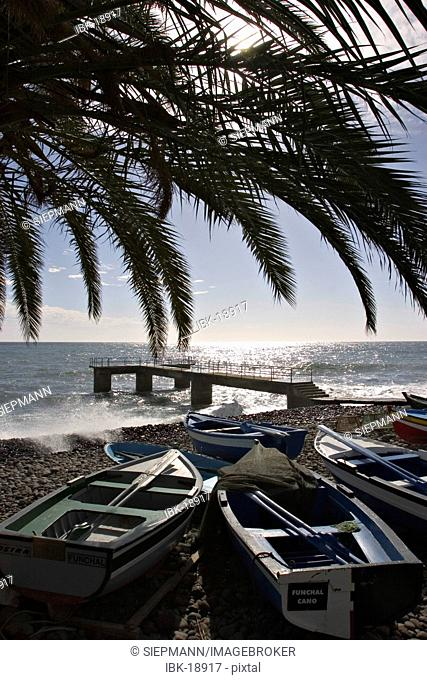 Fishing boats in Santa Cruz - Madeira