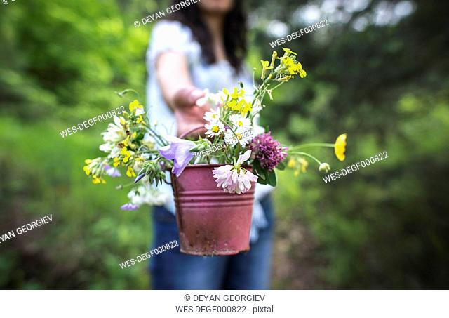 Woman offering small bucket with wildflowers