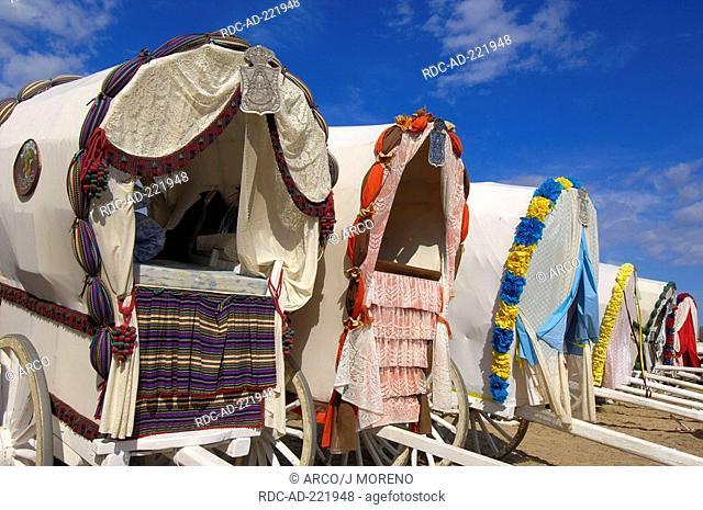 Decorated coaches, pilgrimage Romeria to El Rocio, Almonte, Huelva province, Andalucia, Spain