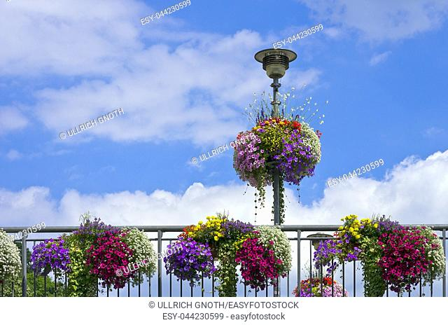 Colourful flowers on a bridge railing and lantern, Tubingen, Baden-Wurttemberg, Germany