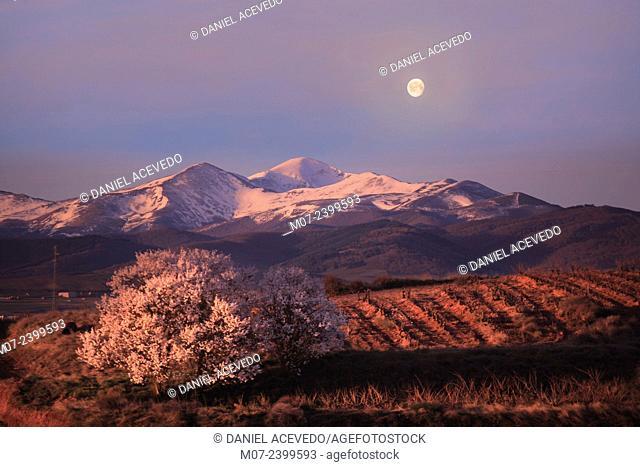 San Lorenzo mountains, Rioja wine region, Spain, Europe