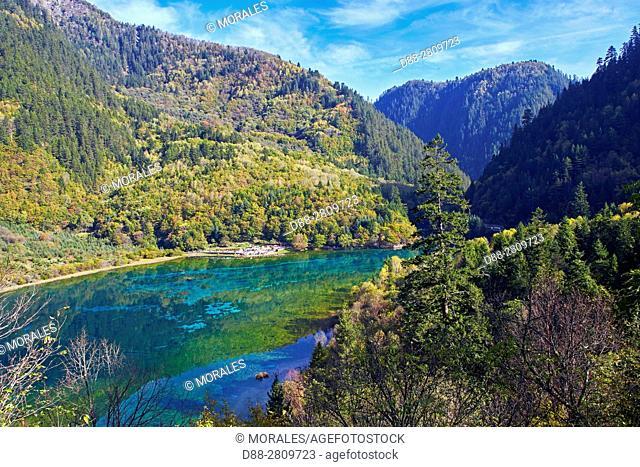 Asia, China, Sichuan province, UNESCO World Heritage Site, Jiuzhaigou National Park, Five flower Lake