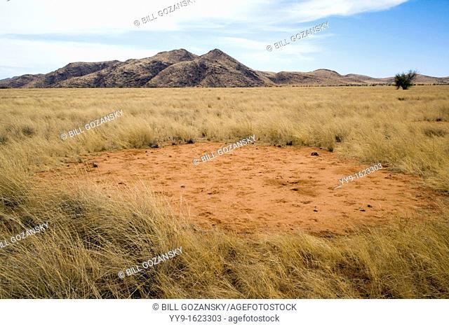 Fairy Circle - near Sesfontein - Kunene Region, Namibia, Africa