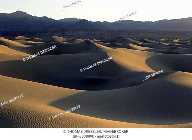 Mesquite Flat Sand Dunes in the early morning, Amargosa Range in the back, Death Valley, Death Valley National Park, California, USA