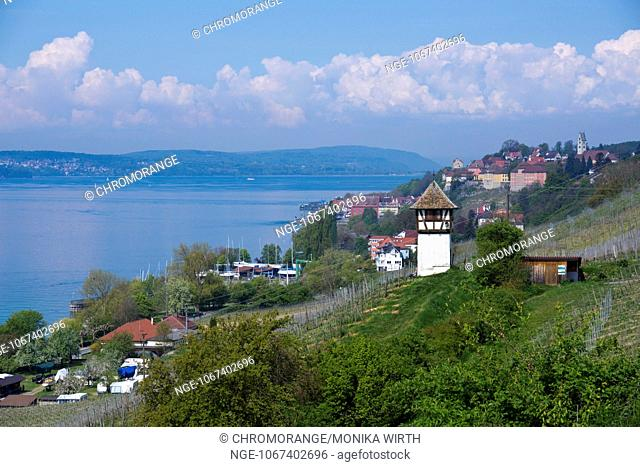 Winegrower tower and Rebgut Haltnau vineyard on Lake Constance, in the background Meersburg, Baden-Wuerttemberg, Germany, Europe