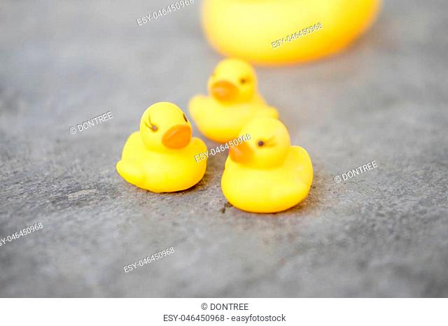 Group of rubber ducks yellow. Selective focus and close up image