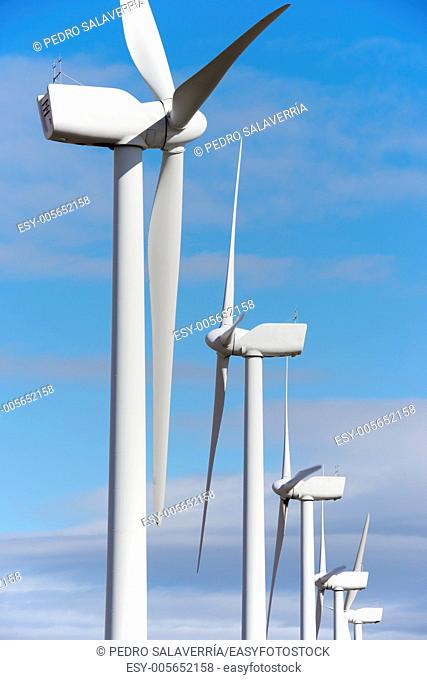 aligned windmills for renewable electric energy production, Pozuelo de Aragon, Zaragoza, Aragon, Spain