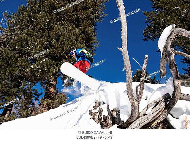 Snowboarder boarding down mountainside, low angle view
