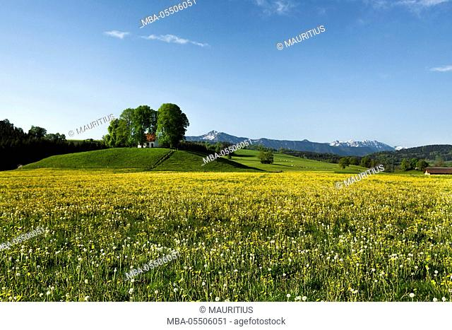 Germany, Bavaria, foothills of the Alps with chapel and spring meadow