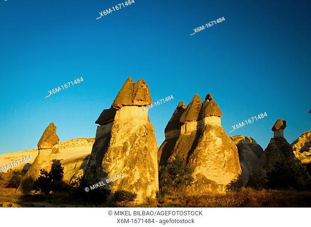 Fairy chimneys  Pasa Bagi  Cappadocia, Turkey