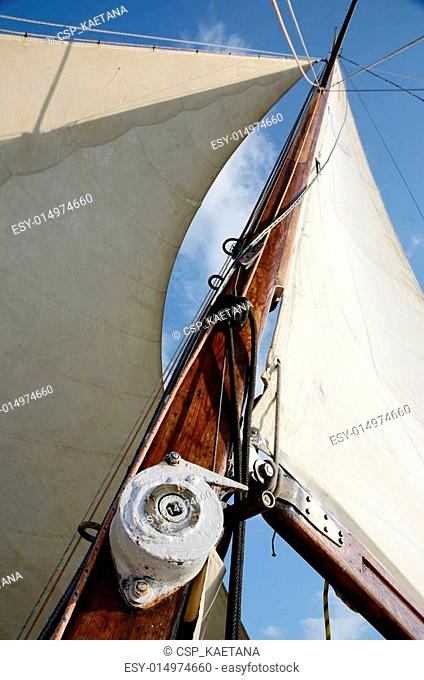 Boat standing and running rigging - mainsail,backstay