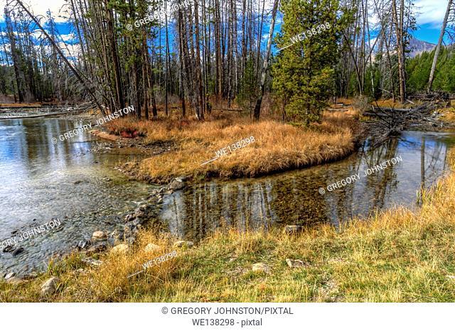 The clear stream water of Redfish Creek near Stanley, Idaho