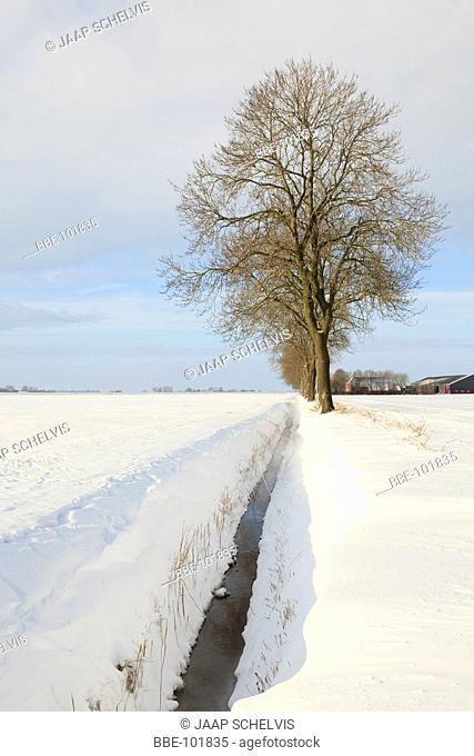 Winter in the most north eastern polder of the Netherlands