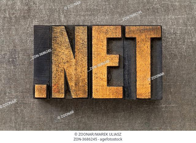 dot net - inetwork nternet domain in vintage wooden letterpress printing blocks on a grunge metal sheet