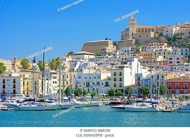 Harbour, Ibiza town, Ibiza, Balearic Islands, Spain