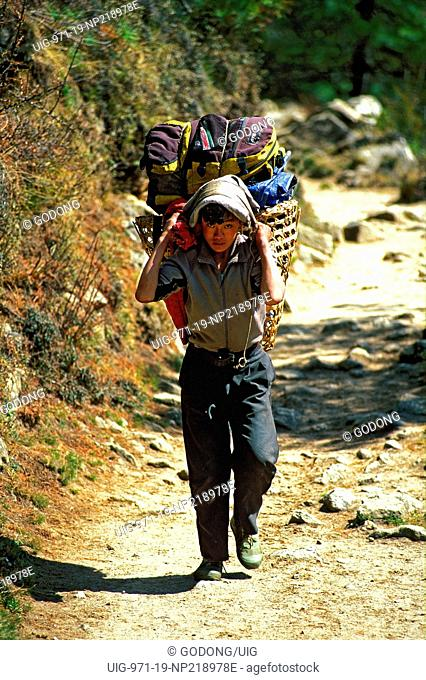 Sherpa carrying bags on a trekking path. Nepal