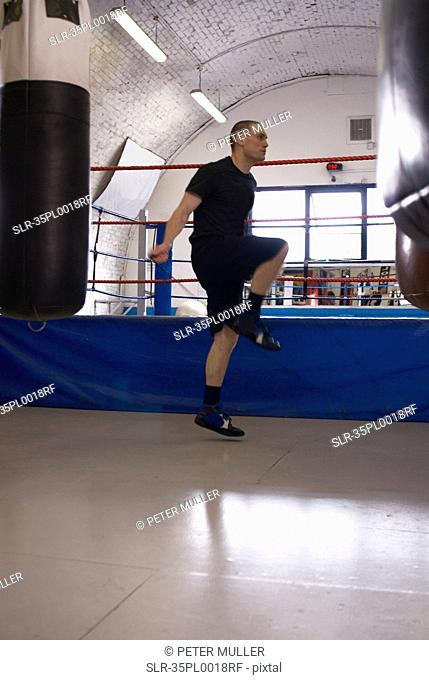 Boxer jumping rope in gym
