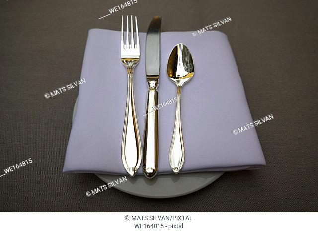 Silver Eating Utensils on a Plate with Napkin in Ascona, Switzerland