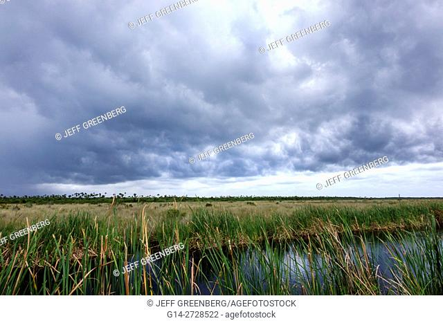 Florida, Tamiami Trail, Florida Everglades, Everglades National Park, tropical wetland, environment, ecosystem, vegetation, sawgrass, marsh, canal, storm clouds