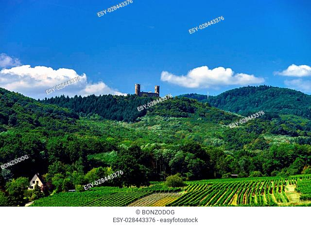Old medieval castle Andlau on the top of the hill, France