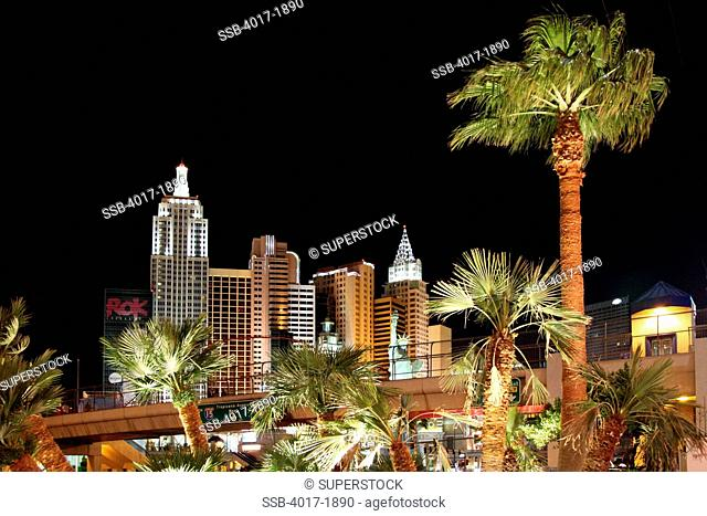 New York New York and Palm Trees on the Las Vegas Strip