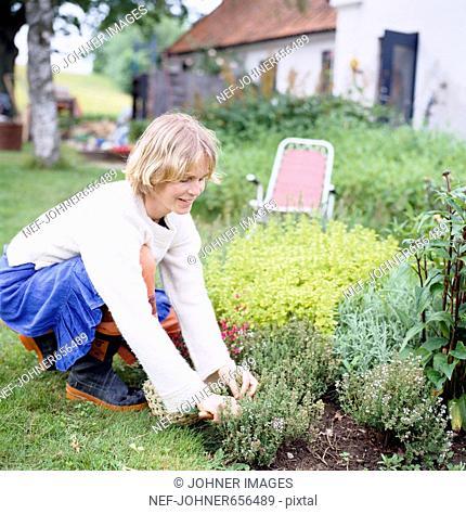 A woman in a garden, Sweden