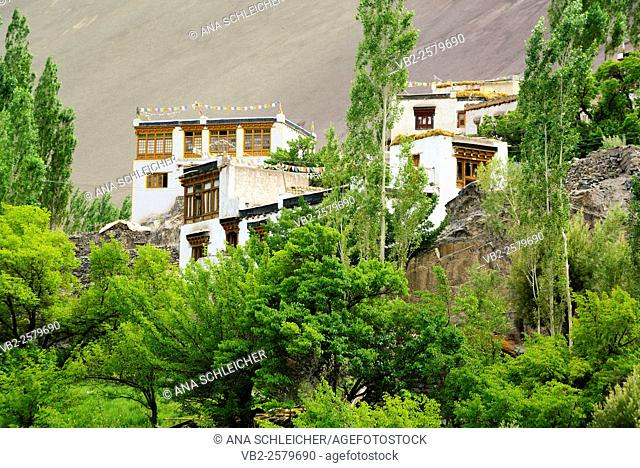 Alchi is a village located in a typical Ladakh landscape with barren mountains and green valleys