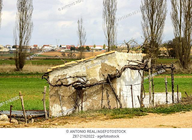 Villar de Cañas, Cuenca province, Castilla-La Mancha, Spain