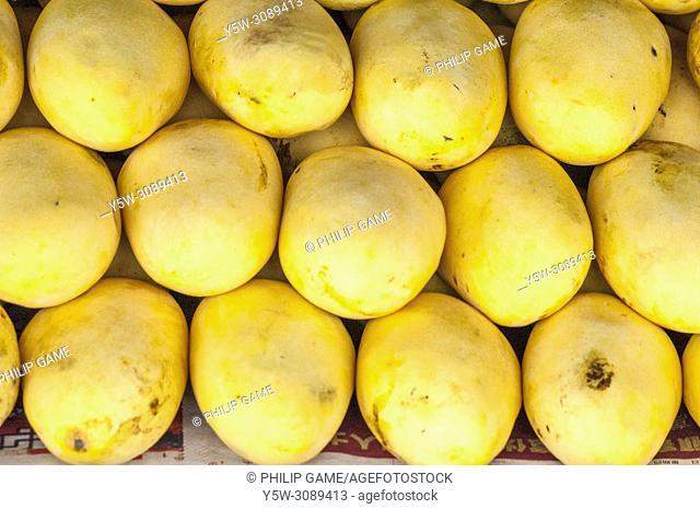 Racks of mangos, Central Market, Kota Kinabalu, Sabah, Malaysian Borneo