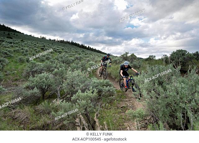 A pair of mountain bikers enjoy the ride at sunset in the Lac Du Bois Protected Grasslands over Kamloops, Thompson Okanagan region, British Columbia, Canada