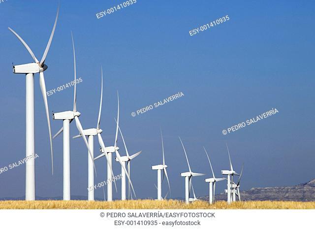 Group of aligned windmills with yellow field in Pozuelo de Aragon, Saragossa, Aragon, Spain