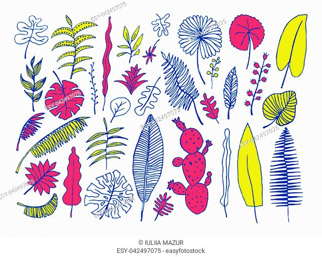 Vector set of bright tropical plants. Hand-drawn Leaves, Inflorescences, Flowers. Blue Yellow Pink colors