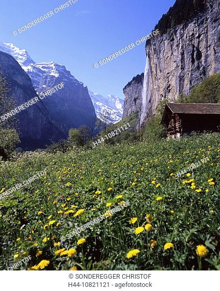 scenery, landscape, mountains, Alps, flower meadow, Staubbachfall, waterfall, rock, Lauterbrunnental, Lauterbrunnen Va