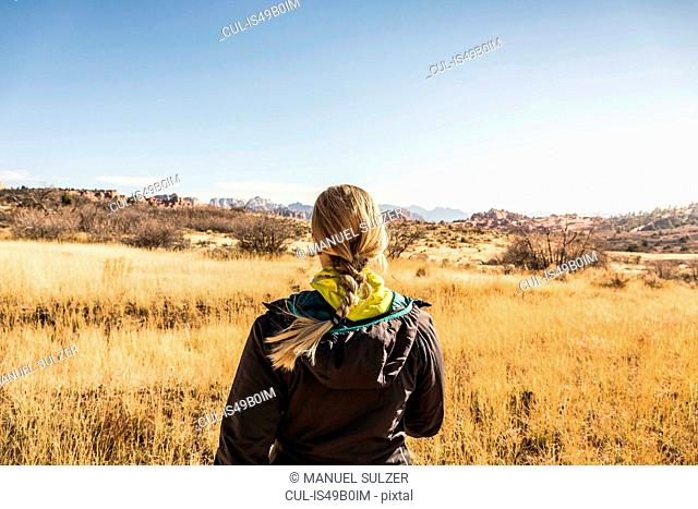 Woman looking at view, rear view, Zion National Park, Springdale, Utah, USA